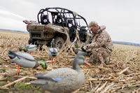 Howard Communications Photo Library-Waterfowl-0020